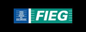 https://magma3.com.br/wp-content/uploads/2020/06/logo_fieg-2-e1591717640146.png